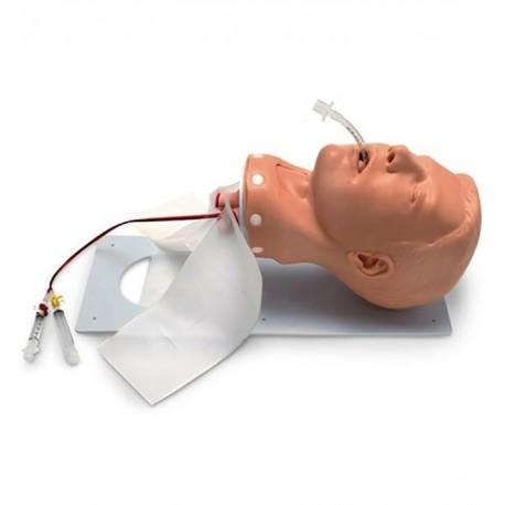 Model dýchacích cest dospělého člověka - luxusní verze