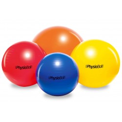 PhysioBall Standard