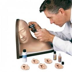 Model ucha pro simulaci vyšetření