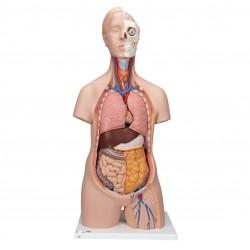 Klasické torzo těla s hlavou - 12 částí