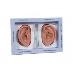 Levé a pravé ucho k ušní akupunktuře