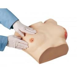 Pokročilý prsní simulátor